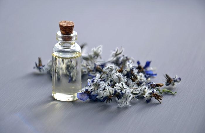 How Essential Oils Help Against Bacteria